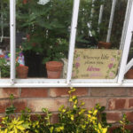 Garden rules made visitors smile - 2017.