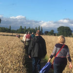 Guided walk on rural footpaths early evening - 2nd August 2017.
