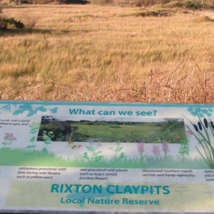One of several information boards that highlights what can be seen at Rixton Claypits Nature Reserve.