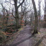 One of the many footpaths through the Rixton Claypits Nature Reserve.