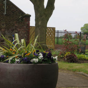 Planters provided and planted by the Friends and new borders adds an additional splash of colour.