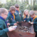 Cubs taking part in a District Survival competition, collecting and grading wood to light a fire.