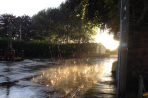 Rain dancing in a puddle outside the cemetery - gently lit by the evening sun July 2017.