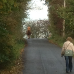 Horse riders and walkers enjoying the village lanes in Glazebrook.