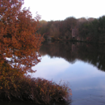 View of the Manchester Ship Canal from Hollins Green October 2014.